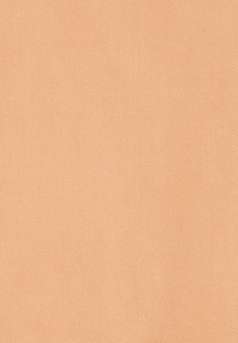 Scarf made of viscose blend in Brown |  Seidensticker Onlineshop